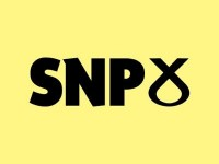 SNP gains are making huge swings